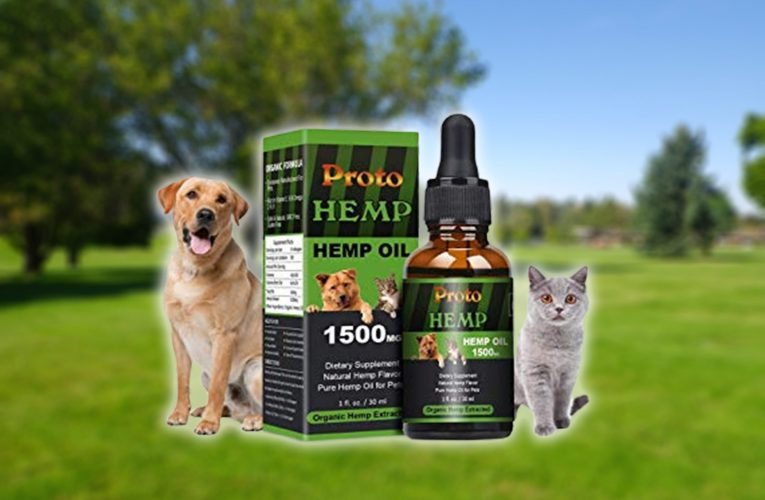 Research Study Something New From Cbd For Dogs Currently? We Requested, You Responded To!